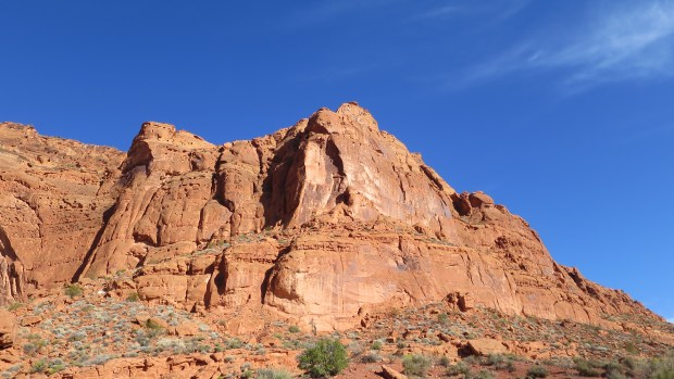 Those beautiful red cliffs, Red Cliffs National Conservation Area, Utah