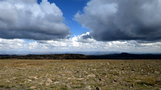 Rock-littered flats at summit of Brian Head Peak, Dixie National Forest, Utah
