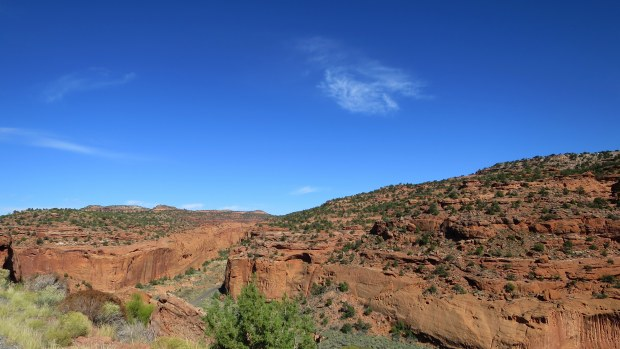 Overlooking Long Canyon, Burr Trail, Grand Staircase-Escalante National Monument, Utah