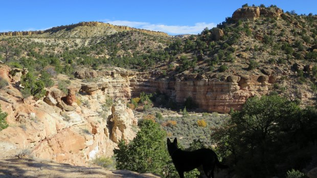 Sleeping Rainbow Trail, Escalante Petrified Forest State Park, Utah