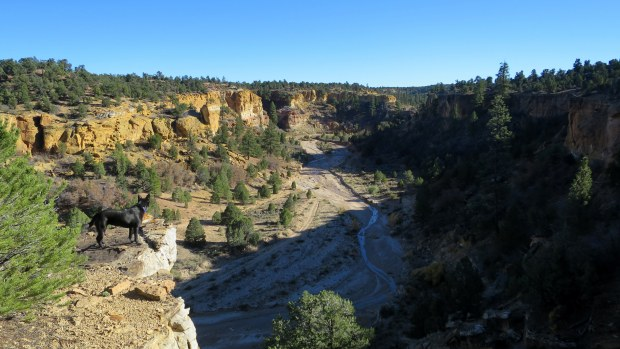 Canyon in Grand Staircase-Escalante National Monument, Utah