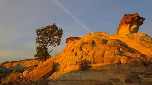 Sandstone at sunrise, Burr Trail, Grand Staircase-Escalante National Monument, Utah
