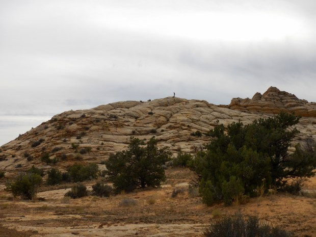Me taking pictures on top of a sandstone butte, Burr Trail, Grand Staircase-Escalante National Monument, Utah