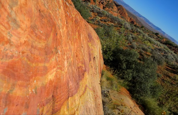 The patterns and many colors of the Red Cliffs National Conservation Area, Utah