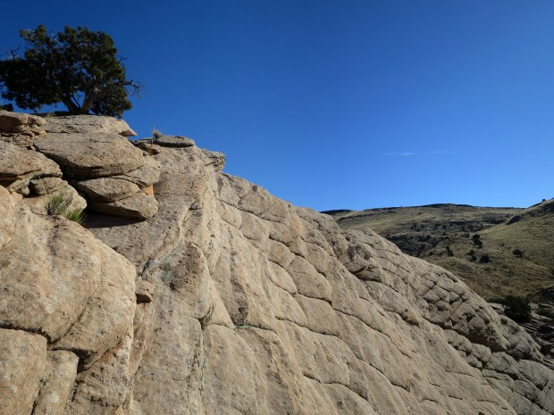 Off the High Point Trail, Red Cliffs Desert Reserve, Utah