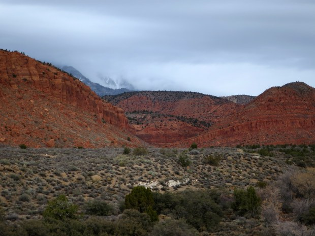 Clouds totally obscuring the 10,000 foot peaks of the Pine Mountains above the Red Cliffs, Red Cliffs National Conservation Area, Utah