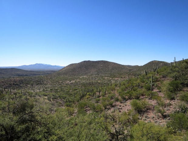 Colossal Cave Mountain Park, Tucson, Arizona