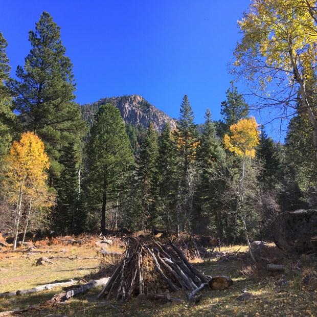 2016-10-23-kolobterr_pinevalleymtn_iphone-108