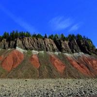 Five Islands Provincial Park, Nova Scotia. Or, This Trail Smells Like Curry.