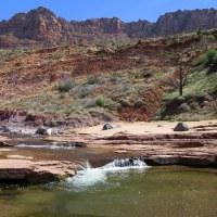 Zion National Park, Part 3: La Verkin Creek Canyon