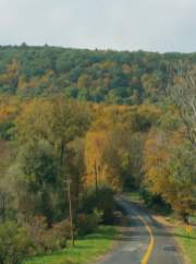 French Hill Road at the beginning of fall