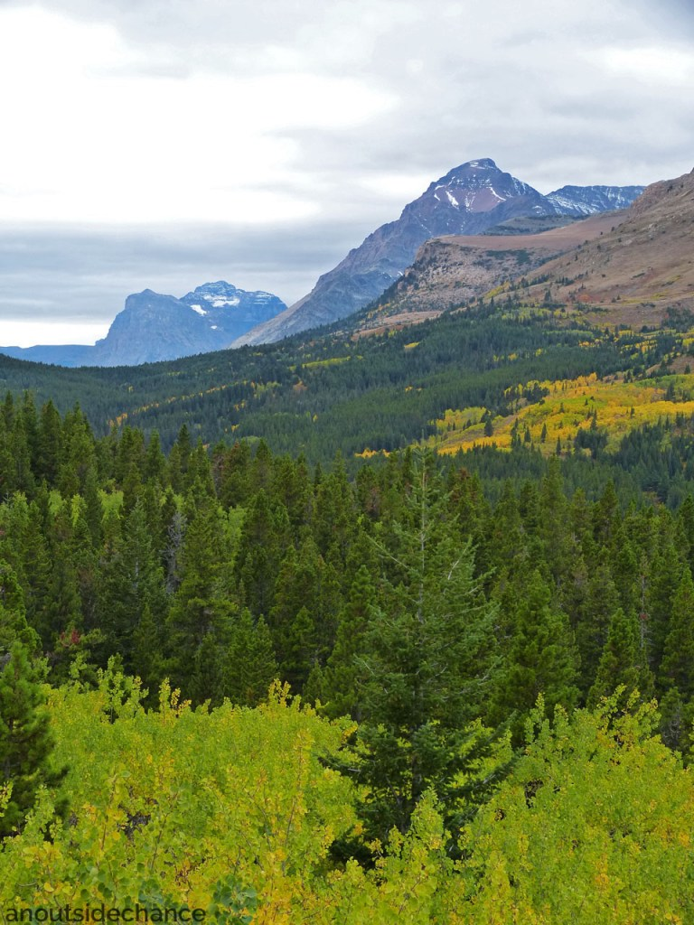 Fall colours in Glacier National Park, Montana, Sept 17, 2016