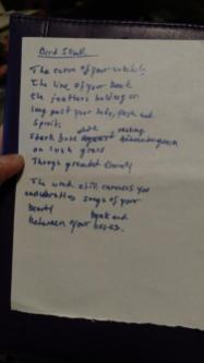 04142019 Bird Skull poem