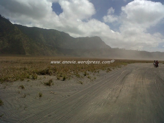 Sand and Grass side by side at Bromo
