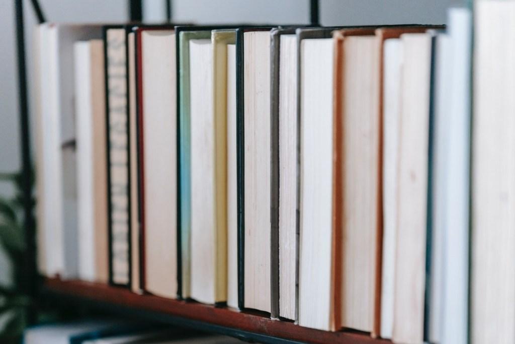 L'Esperto spiega l'articolo 231 antinfortuni - Scaffale con libri di diritto, D lgs 231