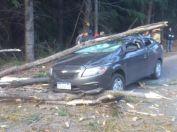 Una roquense en Bariloche se salvó de milagro en medio del temporal de viento