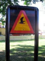 Attenzione...pericolo!