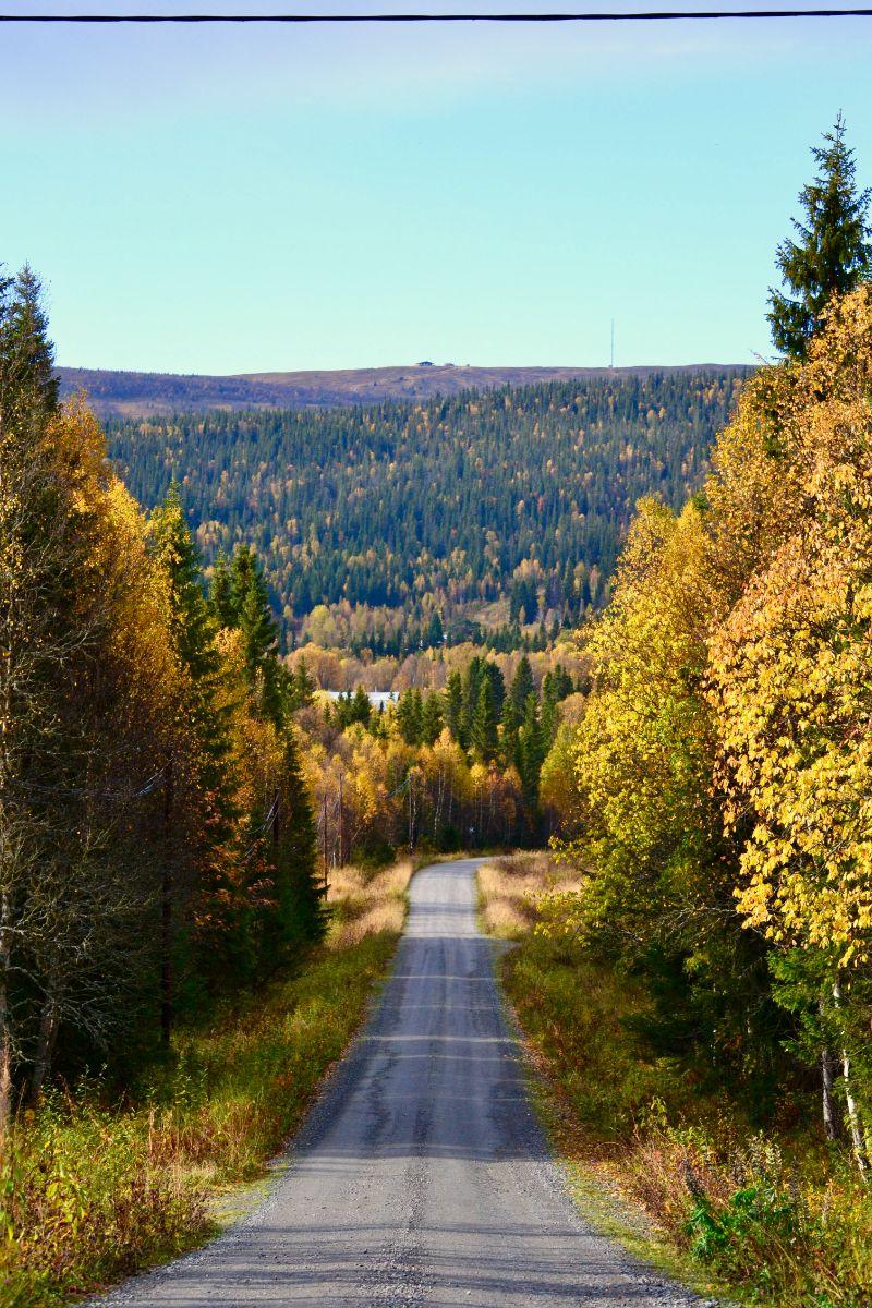 Vägen till Önruns Fjällby och Önrun, Sveriges vidaste vy. Foto © flyttatillfjallen.se