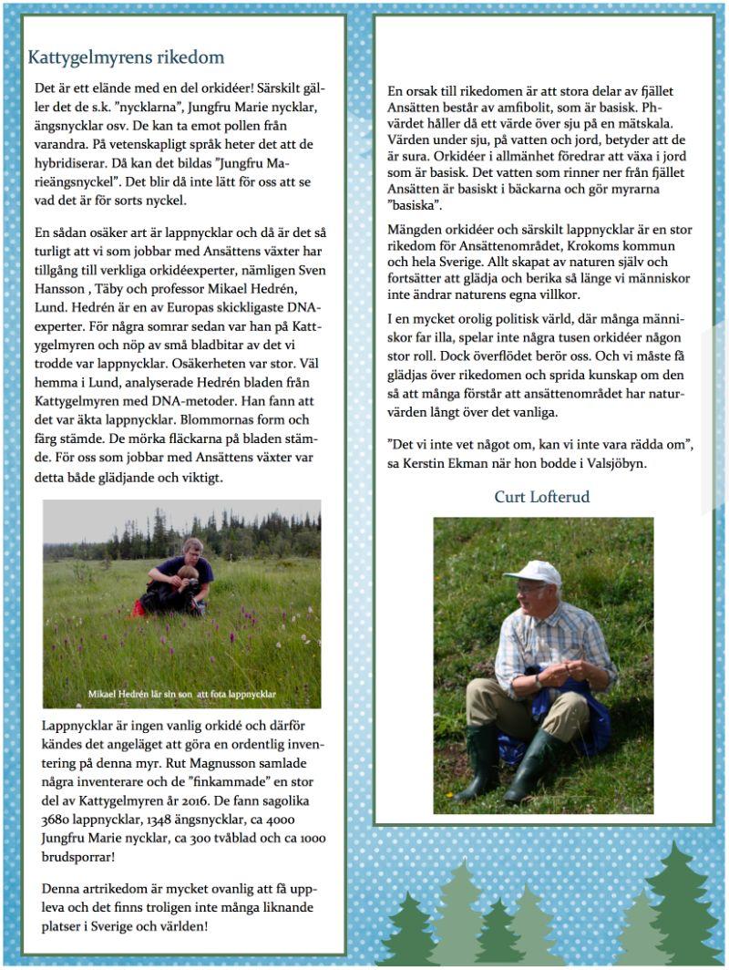 """""""Kattygelmyrens rikedom"""" - artikel av Curt-Lofterud."""