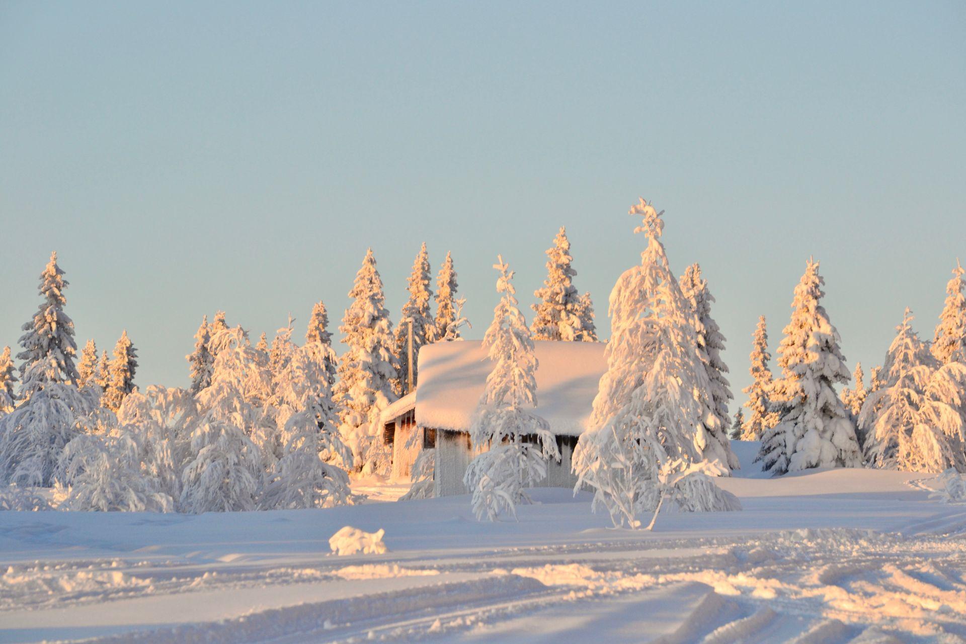 Vinter i Vallrun. Foto © flyttatillfjallen.se