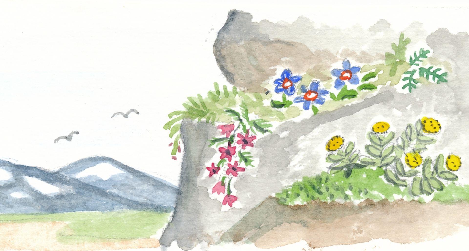 Blomsterstation Klippbranten. Illustration av Rut Magnusson.