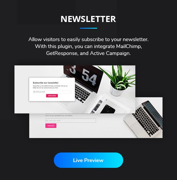 Ansh Elementor Elements Newsletter