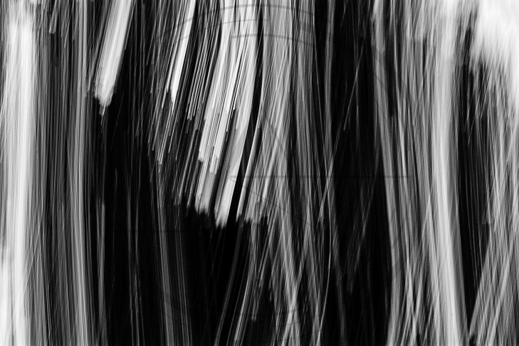White Stripes_1