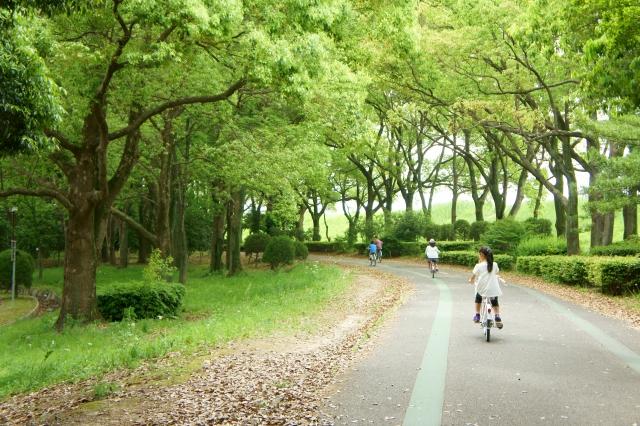 自転車と徒歩 運動量に驚きの差が!?