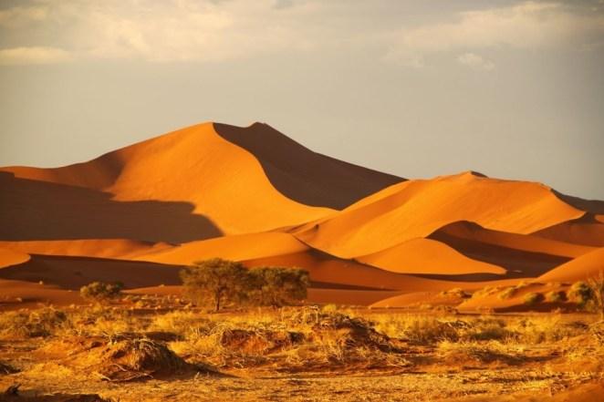 The Namib