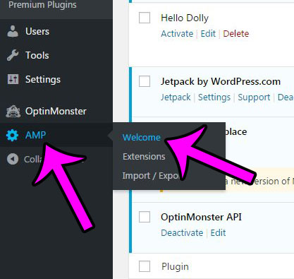 how to add amp functionality to a wordpress site