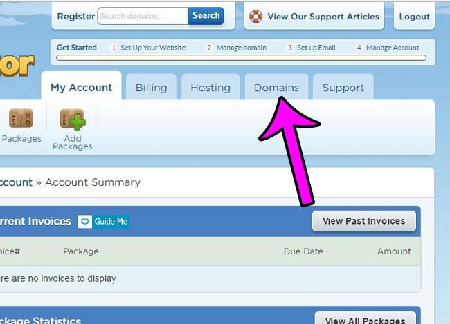 click the domains tab