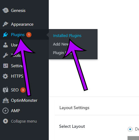 open the installed plugin menu in wordpress