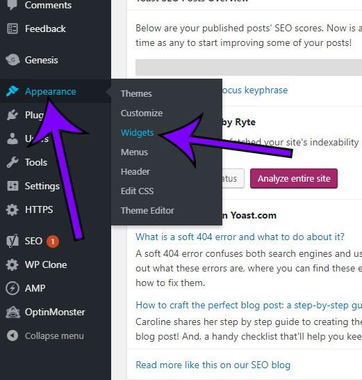 open the wordpress widgets menu