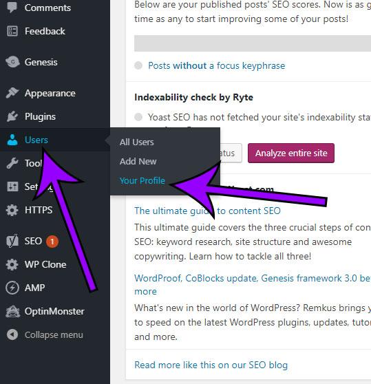 open your wordpress profile