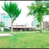 The Lara Landscape Cafe- Sadettin Ersoy- Antalya TV- Muhabir Rüya Kürümoğlu (178)