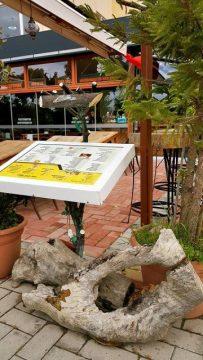 Buzzy Bar Restaurant Alanya Mahmutlar (16)