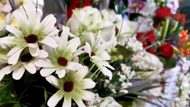 Antalya Işıklar Çiçekçi - 0538 9692901 Gülşen Çiçek Evi (19)