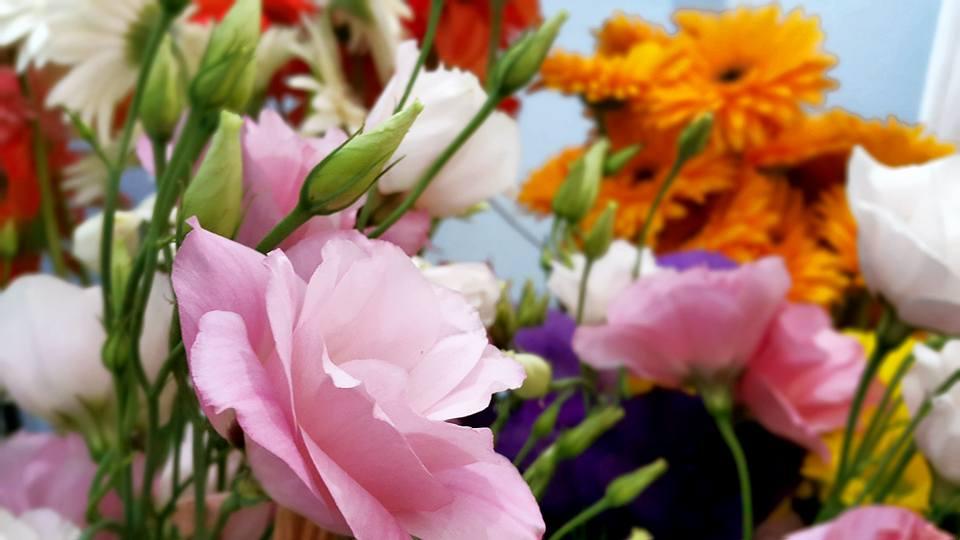 Antalya Işıklarda Çiçekçi – 0538 9692901 Gülşen Çiçek Evi (28)