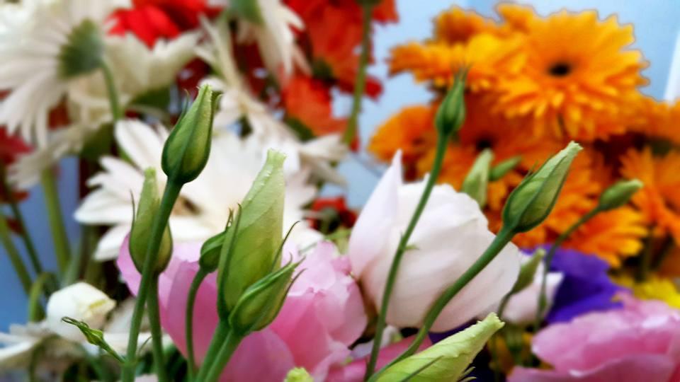 Antalya Işıklarda Çiçekçiler – 0538 9692901 Gülşen Çiçek Evi (26)