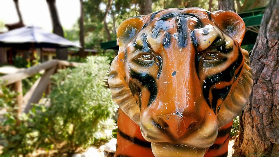 Antalya Köy Kahvaltısı – 0242 4394747 – Çakırlar Gzöleme Bazlama Paşa Kır Bahçesi Çakirlar (18)