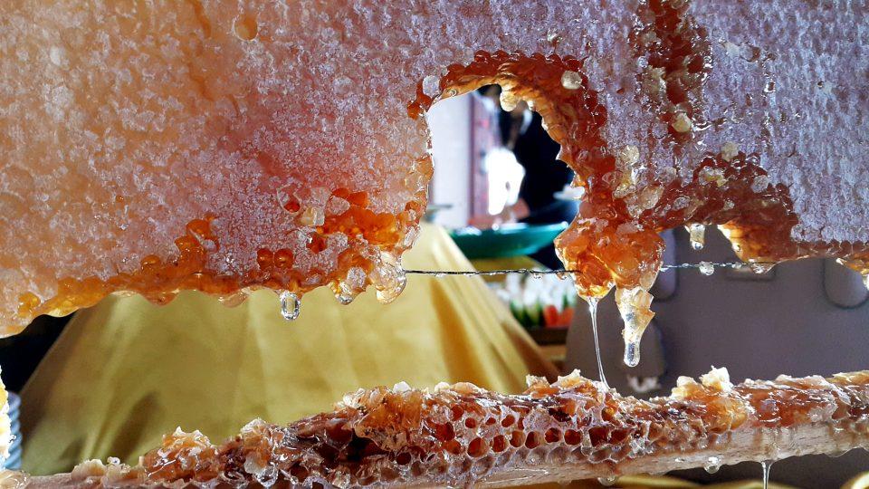 Bal Fotoğrafı – Petek Bal – Antalya Açıkbüfe Kahvaltı – Denizimpark Restaurant