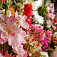 antalya çiçek sipariş 0242 3453210 çiçek gönderme orgil çiçekçilik (1)