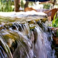 Antalya Köy Kahvaltısı - 0242 4394747 - Çakırlar Gzöleme Bazlama Paşa Kır Bahçesi Çakirlar (10)