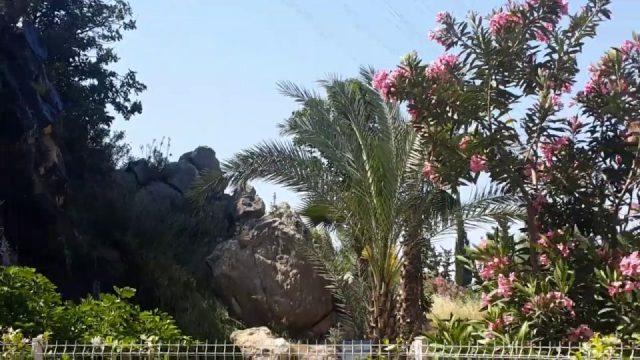Antalya Konyaaltı Altınyaka yolunda park ve kayadan çıkan su kaynağı