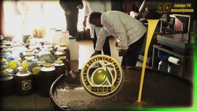 Akdeniz Zeytin Yağı Fabrikası - Sızma Zeytin Yağı Toptan Satışı Gazipaşa Alanya Manavgat