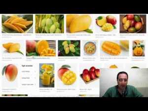Sütlü mango shake nasıl yapılır? Sütlü mango shake tarifi - Google Trends