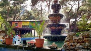 Paşa Kır Bahçesi Çakirlar - 0242 4394747 - Antalya Van Kahvaltısı Çakırlar Kahvaltı Yerleri