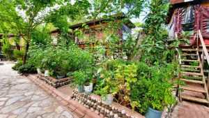 Antalya Köy Kahvaltısı Çakırlar Kahvaltı Yerleri - Arife Kır Sofrası