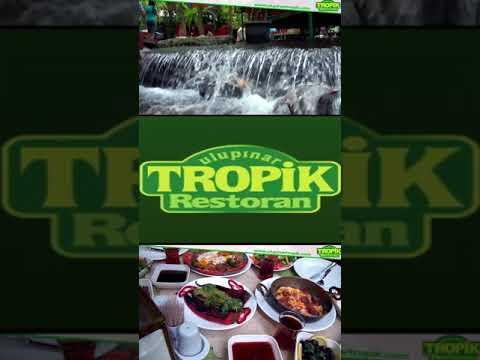 Ulupınar Kahvaltı Alabalık Avı Balık Restaurant Kemer Tropik Restaurant Bungalov Konaklama