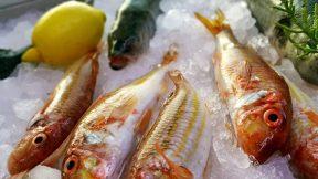Manavgat Kahvaltı Balıkevi Düğün Organizasyon Melas Garden Fish Restaurant